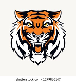 head tiger vector illustration