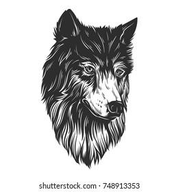 Head wolf hand draw