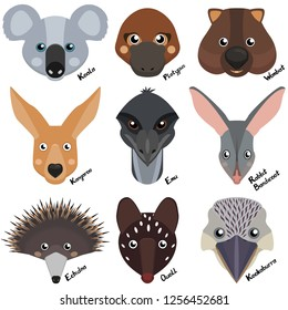 heads and muzzles of wild australian animals, wombat, echidna, kangaroo, koala, rabbit bandicoot, ostrich emu, quoll, platypus. Cartoon collection of vector clipart on white background