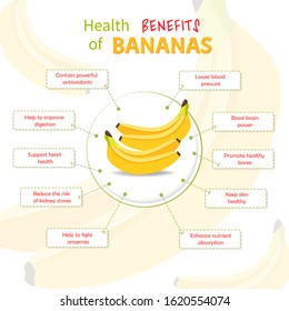 Health Benefits of Banana. Bananas nutrients infographic template vector illustration. Fresh Fruits