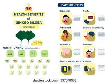 health benefits of ginkgo biloba infographic, medical health infographic for education, vector illustration.