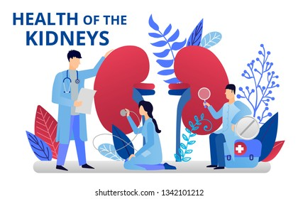 Health care concept. Doctors doing medical research.Urology and urology and nephrology, kidneys health. Vector illustration for web banners, brochure cover design and flyer layout template