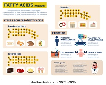 health infographic of fatty acid, nutrition fact vector illustration.