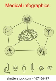 Health infographics on the medical theme, the structure of the human, medical icons, the human brain