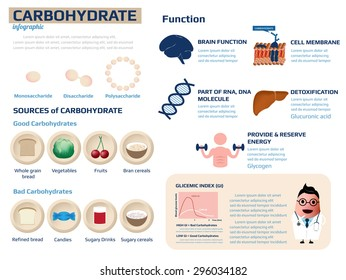 health information of carbohydrate infographic, vector illustration.