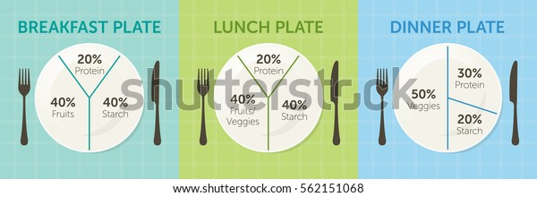 Healthy Eating Plate Diagram Breakfast Lunch Stock Vector ...