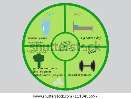 Healthy Food Concept Infographic Pie Chart Stock Vector Royalty
