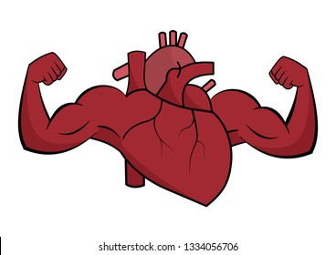 A healthy heart flexes muscle on white background