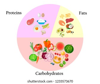 Healthy nutrition for human body. Food and macronutrients in tables and graphs