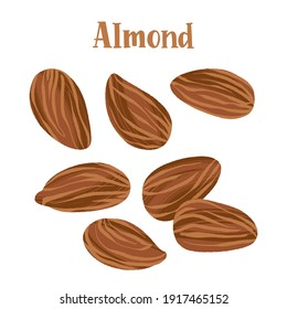 Healthy nutrition product. Almond whole nuts. Vector hand drawn flat isolated illustration with lettering for your design on white background.