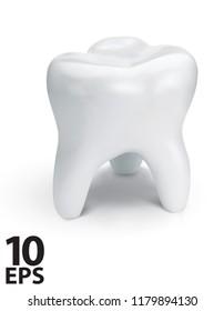 Healthy teeth for dentistry design. Vector 3d illustration