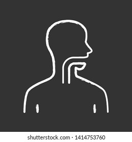 Healthy throat chalk icon. Oral cavity, pharynx and esophagus in good health. Upper section of alimentary canal. Internal body part. Gastrointestinal tract. Isolated vector chalkboard illustration