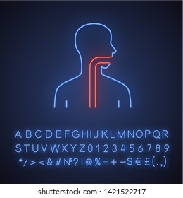 Healthy throat neon light icon. Oral cavity, pharynx and esophagus in good health. Upper section of alimentary canal. Glowing sign with alphabet, numbers and symbols. Vector isolated illustration