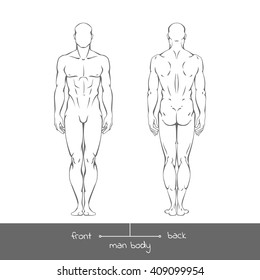 Healthy young man from front and back view in outline style. Male muscular body shapes vector linear illustration with the inscription: front and back. Vector outline  illustration of a human figure