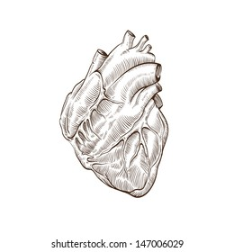 Heart hand drawn isolated on a white backgrounds