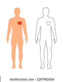 Heart of man. Vector illustration. A full-length man with a heart on a white background.