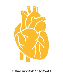 heart organ human isolated icon vector illustration design