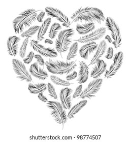 Heart shaped feathers