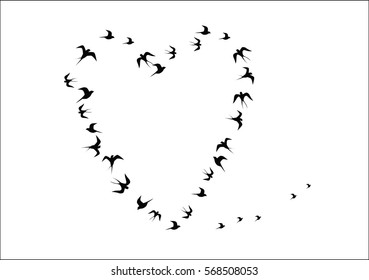 the heart shaped silhouettes of birds vector image