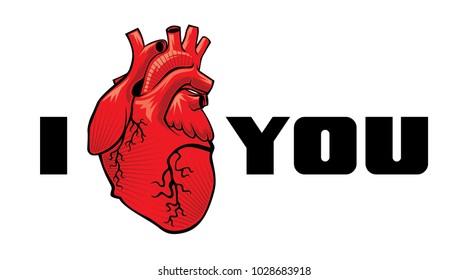 heart vector i love you