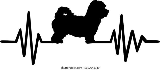 Heartbeat pulse line with Maltipoo dog silhouette