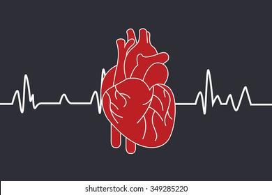 heartbeats cardiogram on dark background, vector red human heart icon.