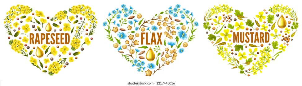 Hearts of flower rapeseed, flax, mustard  for packaging design and advertising. Isolated vector illustration  on white background.