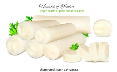 Hearts of palm with parsley. Vector illustration.