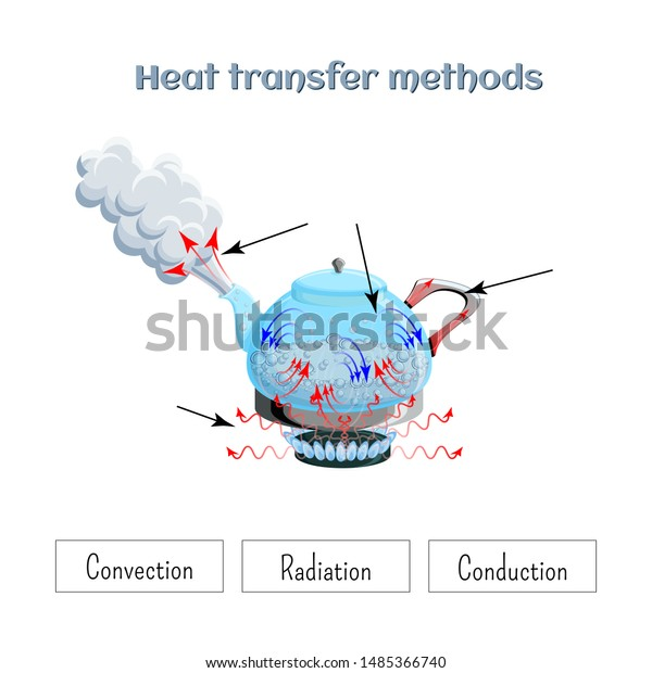 Heat Transfer Methods On Example Water Stock Vector (Royalty ...