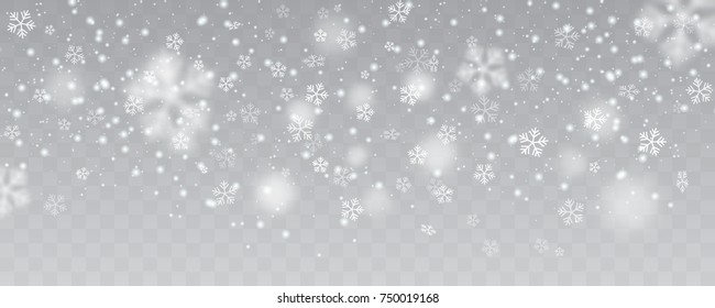 Heavy snowfall, snowflakes in different shapes, forms, vector illustration. Many white cold flake elements on transparent background.
