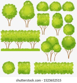 Hedge, clipped bushes for landscape design. Vector images of green tree and bush