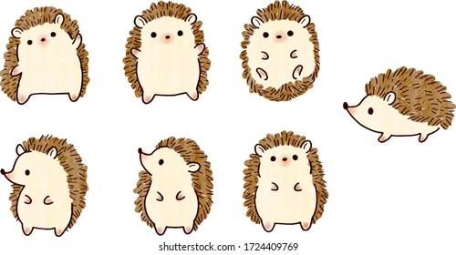 Hedgehog cute illustration set, vector