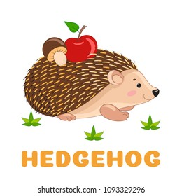 Hedgehog flashcard. Cute hedgehog with apple and mushroom. Vector illustration for kids education and child reading skills development. Sight Words Flash Cards For children to learn read and spell.