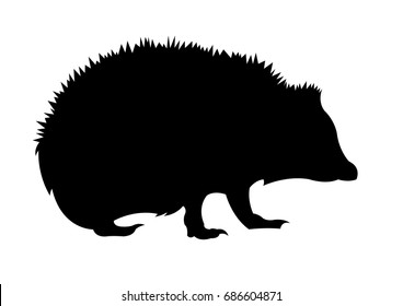 Hedgehog silhouette