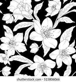 Hellebore floral foliage garland seamless pattern. Christmas winter rose flowers. Helleborus niger species. Detailed outline sketch. White on black fill background.