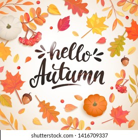 Hello Autumn banner in frame of colorful autumn leaves, rowan berries,acorns, pumpkin for fall season flyers,presentations, reports promotion,web and leaflet, card, poster.Top view. Vector.