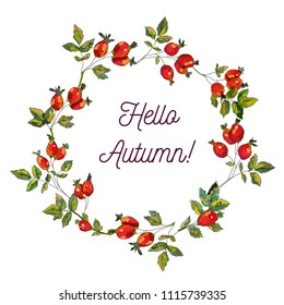 Hello autumn card with hips frame, sketchy design, vector graphic illustration
