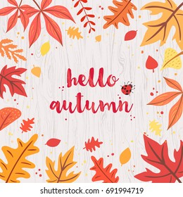 Hello autumn card on gray wooden background. Colorful and vivid composition of text hello autumn and hand-drawn leaves and bug.