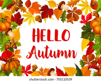 Hello Autumn greeting card with fall season nature frame. Fallen leaf border with orange pumpkin vegetable, acorn, yellow leaves of maple, chestnut, oak and forest mushroom for autumn themes design.
