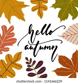 Hello Autumn - hand drawn cozy Fall seasons holiday lettering phrase and leaves doodles isolated on the white background. Fun brush ink vector illustration for banners, cards, posters design