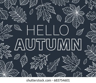 Hello autumn. Leaves of different trees drawn with chalk on black chalkboard. Vector illustration.
