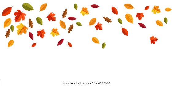 Hello autumn, autumn leaves flat, colored leaves isolated set, autumn elements, autumn banner,  vector illustration