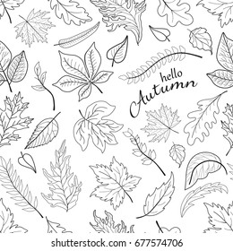 Hello autumn. Seamless pattern with leaves and inscription