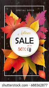 Hello Autumn Vector illustration. Fall sales season. Thanksgiving Holiday decoration. Maple tree leaves, lettering, water drops on wooden texture. Autumn Sale wood background. Sale Discount banner.