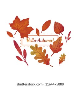 Hello Autumn vector illustration with leafs and text placeholder on white background