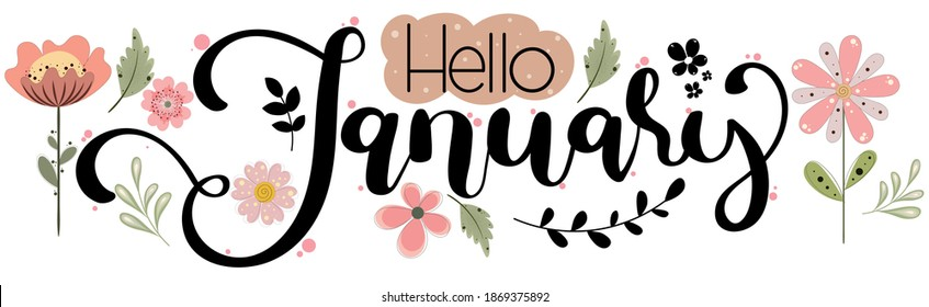 HELLO JANUARY. January month vector with flowers and leaves. Decoration text floral. Hand drawn lettering. Illustration January