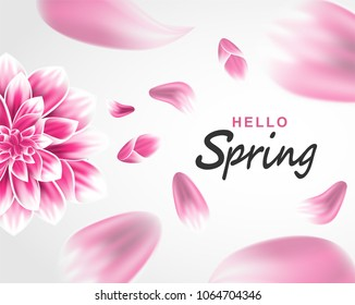 Hello spring background. Flowers petals. flying petals on white background . light and shadow . Vector.
