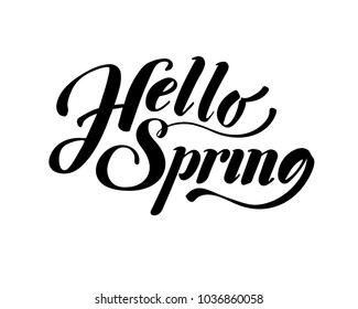 Hello Spring. Hand drawn calligraphy and brush pen lettering. design for holiday greeting card and invitation of seasonal spring holiday. black on white