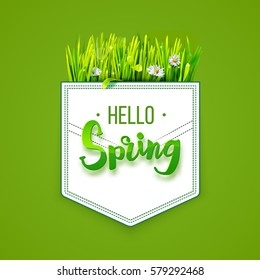 Hello Spring lettering on pocket with green grass isolated on green background. Spring background. Design for banners, greeting cards, spring sales. Vector illustration