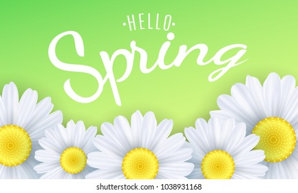 Spring flowers images stock photos vectors shutterstock hello spring phrase seasonal background camomiles flowers on a green background vector illustration mightylinksfo